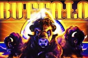 buffalo-slots