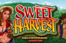 sweet-harvest-slot