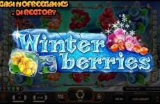 Winter-Berries-Slot