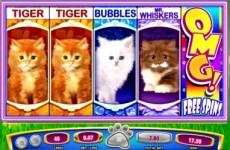 OMG-Kittens-Slot