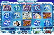 Wild Gambler Arctic Adventure Slot