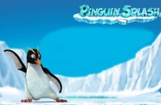 Penguin Splash rabcat free slots