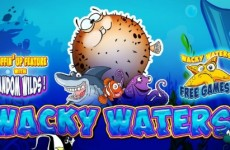 wacky-waters-SLOT