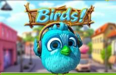 birds-slot