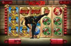 the-ninja-slot