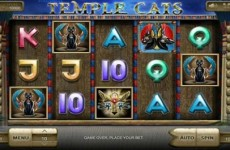 temple-cats-slot