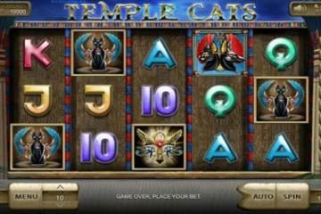 temple-cats-slot
