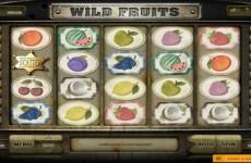 wild-fruits