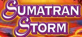 sumatran-storm-slot