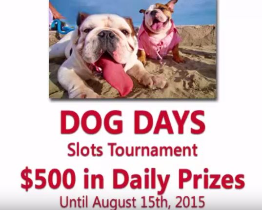 $100 Tournament at Liberty Slots Casino
