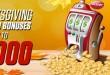Thanksgiving Weekend Bonuses Promotion at Bodog Casino