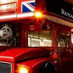 royal-panda-in-london
